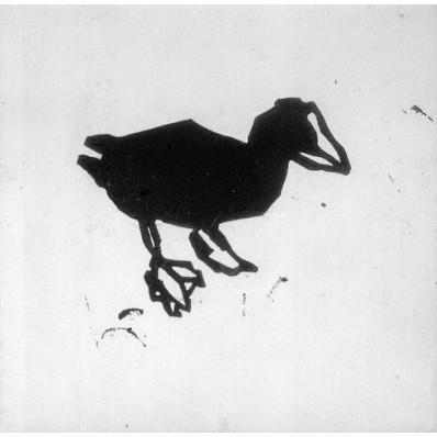 Canard en gravure