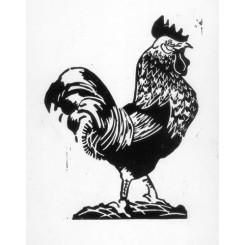 Gravure - Coq